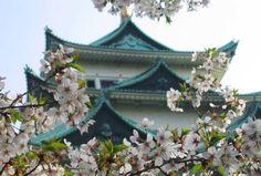 Nagoya Castle, Japan (Photo credit: Flickr user EugeniusD80)    Nagoya Castle is located in Nagoya, central Japan and has been featured in many films such as Mothra vs. Godzilla and Gamera vs. Gyaos.