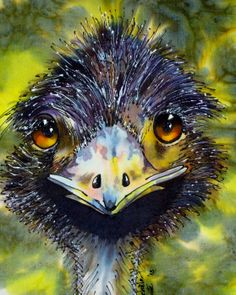 My slk painting of an Australian Emu. Michele Shute in 2014