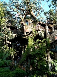 Disneyland.  Disney's Tarzan Treehouse, (wish you could stay in it for awhile.) :)