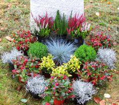 Grabbepflanzung Set Urnen- oder Einzelgrab Wechselbepflanzung Herbst - Winter