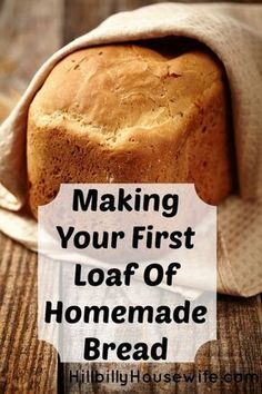 Beginner's Bread Recipe | Hillbilly Housewife. Step by step instructions for making your first loaf of bread.