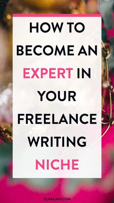 How to Become an Expert in Your Freelance Writing Niche – What's the one thing that successful freelance writers have that new writers don't? A niche. Here's how to become an expert in your chosen niche as a freelance writer.