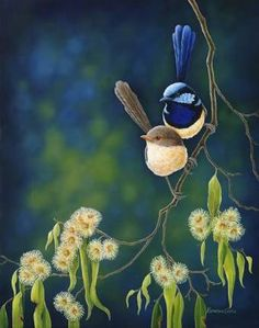 Image result for adelaide art work blue birds