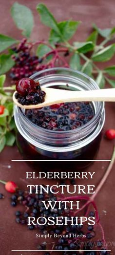 What's the dosage of Elderberry Rosehip tincture? For kids above 12 years and adults To boost your immune system when the flu and cold season hits and for prevention take 20 drops (¼ teaspoon) with a little bit of water. It is better to take it with a meal to limit an upset stomach. When you are already ill or start to have symptoms, use the same amount three times a day. #benefitsoftincture