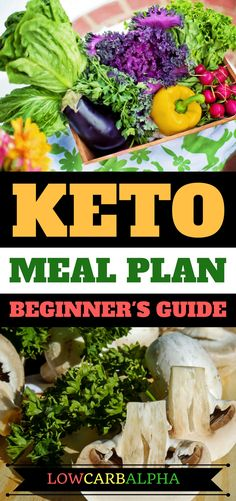 keto meal plan beginners guide https://lowcarbalpha.com/essential-foods-for-ketogenic-diet/ clean eating ketogenic diet menu. Lose weight with healthy nutritious food #lowcarb #keto #lchf #lowcarbalpha