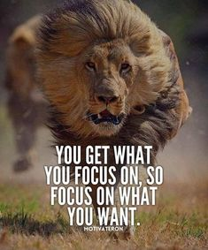 Motivational Quotes 377 Motivational Inspirational Quotes for success 101