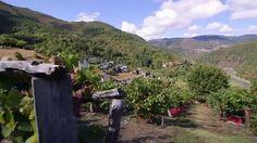 Asturias o el turismo rural y de aventura con encanto