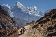 Way to Thame, Nepali | by Indrik myneur
