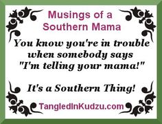It's a Southern Thing! Four words, a whole lot of fear Musings of a Southern… Southern Drawl, Southern Ladies, Southern Pride, Southern Comfort, Simply Southern, Southern Charm, Southern Belle, Southern Heritage, Southern Living