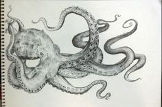 Octopus are so fascinating. The way they move about, their colors and textures.