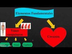 Flipped Classroom, Videos, Tech Companies, Company Logo, Play, Logos, Circulatory System, Science, Logo