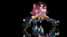 Gentle Iris, Crystal Flora from Elena Orlenko  (Please do not confuse with Kanzashi by Sakae) www.facebook.com/... (fantasy film, Luxury jewelry, expensive wedding decorations, elf ornaments, resin and wire, American flowers)