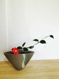 宮崎花blog Little Flowers, Fresh Flowers, Beautiful Flowers, Ikebana Arrangements, Floral Arrangements, Flower Vases, Flower Art, Dwarf Fruit Trees, Japanese Flowers