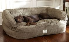 Orvis Lounger Deep Dish Dog Bed – Medium dogs up to 60 lbs.- Brown Tweed Orvis Lounger Deep Dish Dog Bed – Medium dogs up to 60 lbs. Dog Rooms, Medium Dogs, Large Dogs, Large Dog Beds, Small Dogs, Unique Dog Beds, Large Dog House, Cool Dog Beds, Four Legged