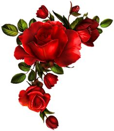 Lady in Black Red rose corner Arte Floral, Vintage Diy, Vintage Images, Rose Tattoos, Flower Tattoos, Decoupage Paper, Flower Wallpaper, Vintage Flowers, Clipart