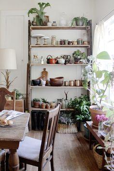 観葉植物をインテリアにプラス。お部屋をナチュラルでリラックスできる空間に