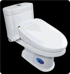 bidet toilet combo find more info at