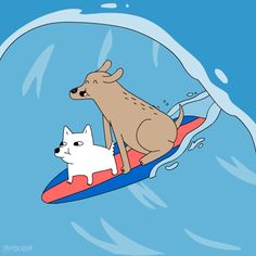 gif dog lol fox artists on tumblr animation domination dogs animation domination high-def fox adhd foxadhd surf surfing csaba klement surfboad trending #GIF on #Giphy via #IFTTT http://gph.is/2aRpcSF