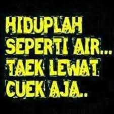 Galib01: Kumpulan DP Gambar Lucu Terupdate 2016 Quotes Lucu, Jokes Quotes, Cartoon Jokes, Funny Jokes, Life Insurance For Seniors, Quotes Indonesia, Funny Stickers, Meme Faces, Islamic Quotes
