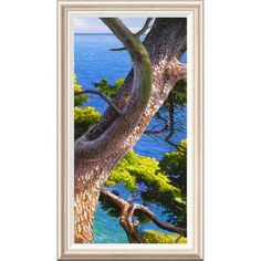 Global Gallery 'Lavandou III' by Adriano Galasso Framed Painting Print Size: