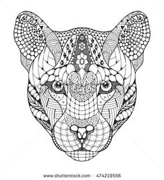 Cougar, mountain lion, puma, panther head zentangle stylized, vector…