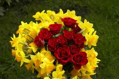 """One Of The Best Moments In Life Is When,  """"U See Ur Yellow Rose Turning Red Rose"""",  Hard 2 Understand????So Read Again…""""Ur Friend Turns into Ur Love"""""""