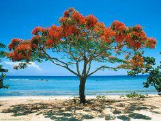 La Boca beach in Trinidad, Cuba.