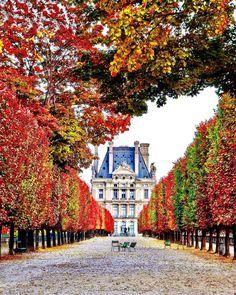 Autumn in Paris - photo by @marcellopez_ su Instagram
