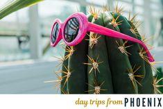 The 50 Best Day Trips from Phoenix Arizona Day Trips, State Of Arizona, Arizona Travel, Grand Canyon Vacation, Honeymoon Tips, Family Resorts, Family Vacations, Visit Arizona, Natural Bridge