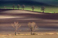 Photograph Fields by Martin Rak on 500px