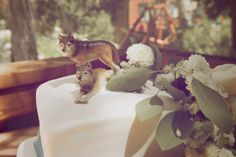 Yes, if I ever got married, I would have a wolf cake topper! <3
