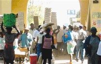 Comisión arranca para Haití a tratar tema veda pollos y huevos - Cachicha.com