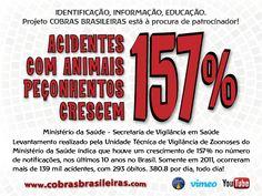 Acidentes com animais peçonhentos crescem 157% Ministério da Saúde - Secretaria de Vigilância em Saúde  Levantamento realizado pela Unidade Técnica de Vigilância de Zoonoses do Ministério da Saúde indica que houve um crescimento de 157% no número de notificações, nos últimos 10 anos no Brasil. Somente em 2011, ocorreram mais de 139 mil acidentes, com 293 óbitos. 380.8 por dia, todo dia!
