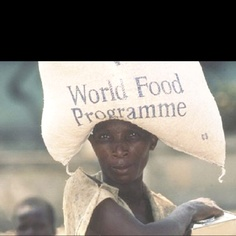 20 Signs That We're Approaching A Global Food Crisis In case you haven't noticed, the world is on the verge of a horrific global food. World Food Programme, People Of The World, Do Everything, Social Justice, Signs, Reading, Movie Posters, Shop Signs, Film Poster