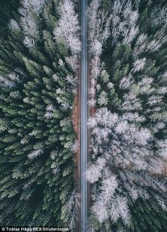 Beautiful Forest and Road Photography by Tobias Road Photography, Aerial Photography, Inspiring Photography, Nature Music, 3d Models, Birds Eye View, Landscape Photographers, Tobias, Scenery