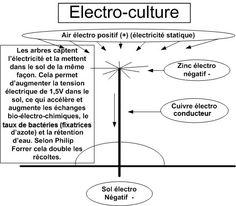 antenne electroculture
