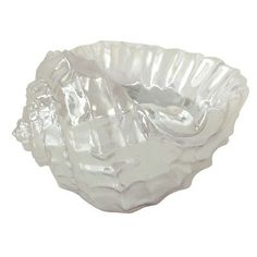 Beachcrest Home Lauderdale Lakes Seashell Decorative Bowl