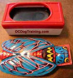 Dog Training Equipment Essential tools and equipment for effectively training your dog.