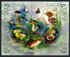 Mushroom postage stamps, from Chad.