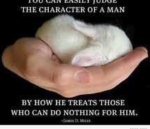 Inspiring picture 9gag, animal, animals, baby, can. Resolution: 437x412 px. Find the picture to your taste!