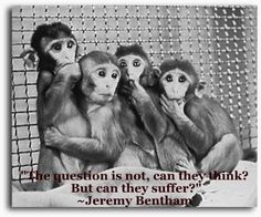 """Animal Liberation: """"compassion begets compassion"""": VIVISECTION ..."""