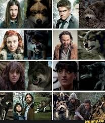Image result for wolfblood