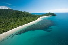 Cape Tribulation in the Daintree Rainforest. Stay for a night to explore this amazing part of Queensland further