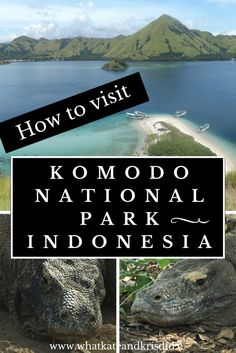 How to visit Komodo National Park, Indonesia, including accommodation, hotels and tours.