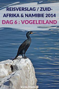 Op dag 6 van mijn rondreis door Zuid-Afrika en Namibië bezocht ik een rooibosplantage, Vogeleiland en overnachtte in Calvinia. Een lange dag. Alles over de zesde dag van mijn reis door Zuid-Afrika & Namibië lees je hier. Lees je mee? #zuidafrika #rooibos #vogeleiland #calvinia #reisverslag #jtravel #jtravelblog