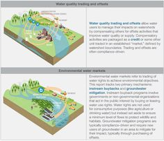 """Can Investments in """"Green Infrastructure"""" Help Coastal Cities Survive Climate Change? Sustainable Development, Sustainable Design, Sustainable Living, Water Activities, Water Quality, Environmental Issues, Climate Change, Cities, Acting"""