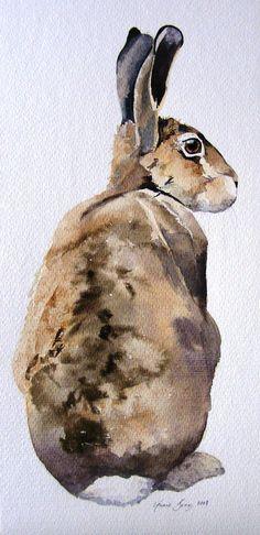a whole hare !