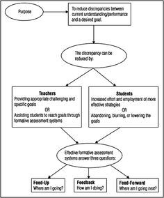 A Formative Assessment System from the book Formative Assessment Action Plan by Nancy Frey and Douglas Fisher