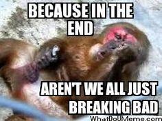 Aren't we all sobbing, masturbating monkeys?