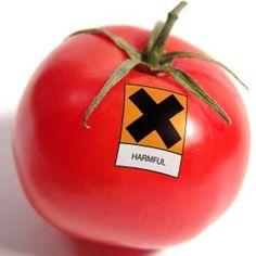 Avoid Nightshade Vegetables  Six Foods That May Exacerbate Psoriasis